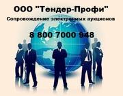 Банковская гарантия по 44 и 223-ФЗ
